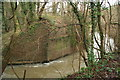 ST7661 : Site of old railway bridge by Guy Wareham