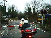 TQ2151 : Betchworth Level Crossing by tristan forward