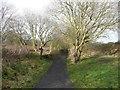 NZ8909 : Footpath crossing the railway path at the site of Monkey Bridge by Humphrey Bolton