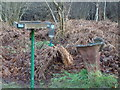 TF0820 : The Squirrel Birdbath by Bob Harvey