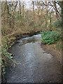 SS9085 : The Afon Garw north of Brynmenyn by eswales
