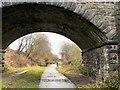 SJ9493 : Under Knott Fold Bridge by Gerald England