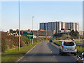 SZ0191 : Holes Bay Road (A350) by David Dixon