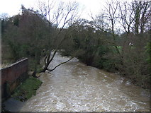 NZ4706 : The River Leven, Hutton Rudby by JThomas