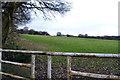 SE1936 : Field near Bill Wood, Calverley by John Sparshatt