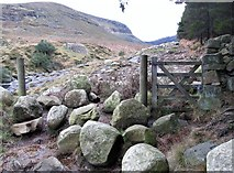 J3629 : The mountain gate on the Glen River valley track by Eric Jones
