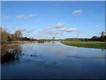 TQ5203 : Cuckmere River by Simon Carey
