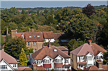 TQ4666 : Orpington rooftops by Ian Capper