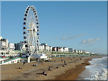 TQ3103 : Brighton beach and seafront, with wheel by Roger  Kidd