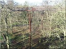 TQ1876 : Treetop Walkway at Kew Gardens by Marathon