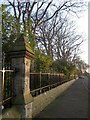NZ9009 : Cemetery railings, Larpool Lane by Derek Harper