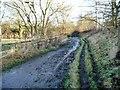 SE3929 : The Leeds Country Way, west of Fleakingley Bridge by Christine Johnstone
