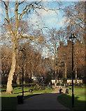 TQ3081 : Bloomsbury, WC1 by David Hallam-Jones