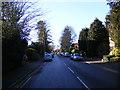 TL1314 : Douglas Road, Harpenden by Adrian Cable