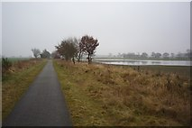 SE6045 : Selby cycle path by DS Pugh