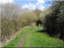 SP4508 : Thames Path by Shaun Ferguson