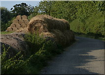 SK8707 : Straw bales next to the path by Mat Fascione