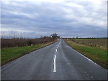 NZ3520 : Folly Bank towards Little Stainton by JThomas