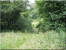 ST6594 : Footbridge on the path to Hill by Robin Stott