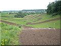 ST6695 : Motocross track near Newpark Farm by Robin Stott