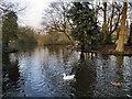 SD5706 : Mesnes Park Lake, Wigan by David Dixon