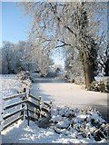 TL8063 : Frozen moat of the former Little Saxham Hall by Bob Jones