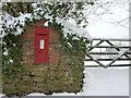 ST5205 : Corscombe: postbox № DT2 111 by Chris Downer
