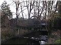 TQ2172 : Beverley Bridge, Richmond Park by David Anstiss