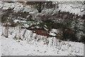 TQ5940 : Chalybeate Spring by N Chadwick