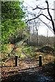 SU9029 : Public bridleway at Sheetland by Hugh Craddock