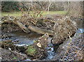 SS9086 : Uprooted trees in the Afon Garw near Bettws by eswales
