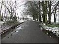 H5472 : Bracky Road by Kenneth  Allen