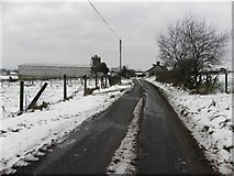 H5672 : Shinnagh Road, Mullaslin by Kenneth  Allen