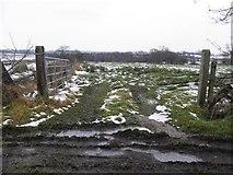 H5672 : Muddy along Tullyneil Road by Kenneth  Allen
