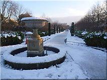 TQ2882 : The Avenue Gardens, Regent's Park in snow by Marathon