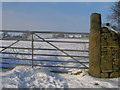 SE0235 : Benchmark on a gatepost beside Marsh Lane by John Slater