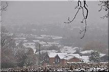 SS9712 : Tiverton : Snowy Scenery by Lewis Clarke