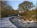 SD7706 : Manchester, Bolton and Bury Canal near Bridge#16 by David Dixon