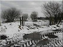 H5664 : Mucky ground, Radergan by Kenneth  Allen
