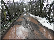 H5664 : Potholes along a country lane, Radergan by Kenneth  Allen