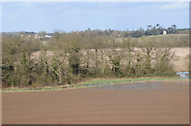 SO8843 : View to Croome Court from Dunstall Castle by Philip Halling