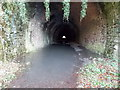 SO3701 : Through the former Usk railway tunnel by Jaggery