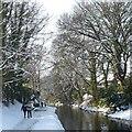 ST2788 : A winter's stroll alongside the canal by Robin Drayton
