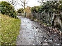 SJ9599 : Footpath near Stamford Park by Gerald England