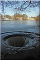 SJ8966 : The Fish Pond overflow, North  Rode Manor by Peter Turner