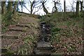 SD7313 : Footpath through the woods by Philip Platt