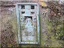 SE0424 : Ordnance Survey Flush Bracket 851 by Peter Wood