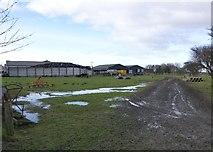 NZ2796 : Muddy field at High Chibburn by Russel Wills