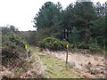 SY8491 : Permissible Footpath by Nigel Mykura