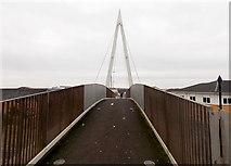 ST1167 : Across Thompson Street footbridge, Barry by Jaggery